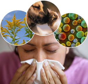 How-poor-indoor-air-quality-could-trigger-allergies-4