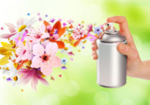What-is-the-best-natural-home-made-air-freshener